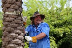 Grant Stephenson, founder of Horticultural Consultants Inc. in Houston and an expert on cold-hardy palms, bamboo and cycads, will be the guest speaker for the SFA Gardens' monthly Theresa and Les Reeves Lecture Series, slated for 7 p.m. March 9 in the Brundrett Conservation Education Building at the Pineywoods Native Plant Center.