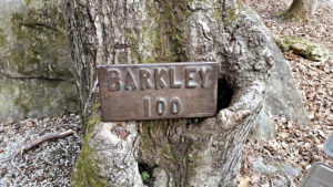 "A free, one-night screening of ""The Barkley Marathons: The Race That Eats Its Young"" is at 7 p.m. Friday, Sept. 1, in The Cole Art Center @ The Old Opera House."